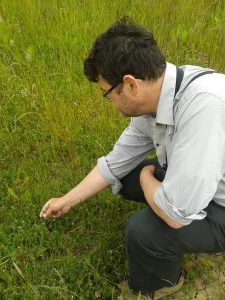 The RSPB's Chris Tyas with a sprig of sea clover.